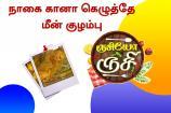 ருசியோ ருசி: நாகை கானா கெழுத்தே மீன் குழம்பு