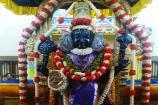 நின்ற திருக்கோலத்தில் காட்சியளிக்கும் அத்திவரதர்!
