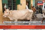 பால் விலை உயர்வு: வரவேற்பும், எதிர்ப்பும்