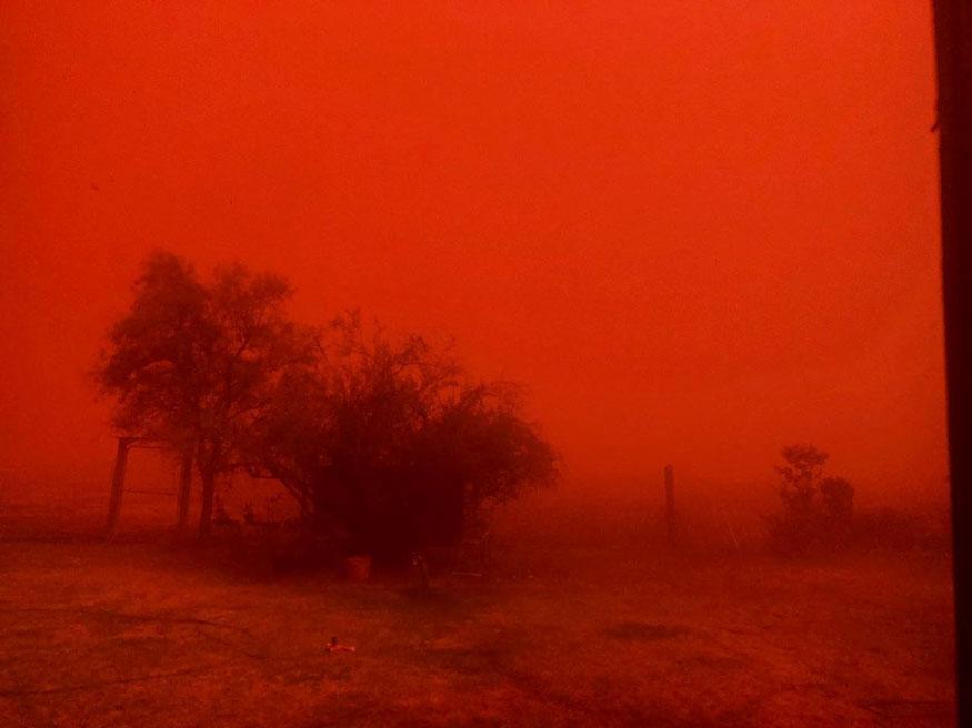 ஆஸ்திரேலியாவில் நியூ சவுத் வேல்ஸ் பகுதியில் வீசிய புழுதிப் புயல். (Image: Bronwyn Alder/ Reuters)