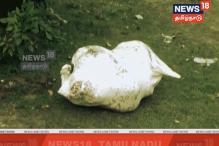 சென்னையில் மீட்டர் வட்டி வசூலித்த பெண் கொடூரமாகக் கொலை - 2 பெண்கள் உள்பட 4 பேர் கைது